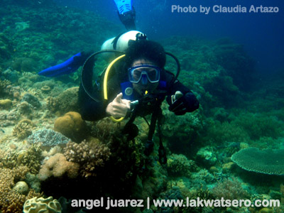 Diving in Sogod Bay