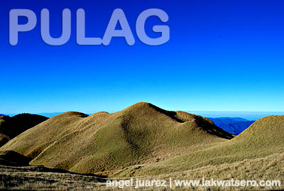 The rolling plains of Mt. Pulag