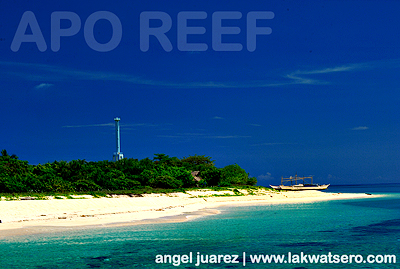 Apo Island and Lighthouse