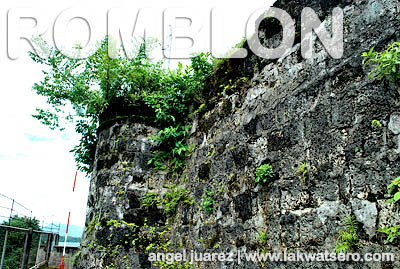 The wall of San Andres Fort