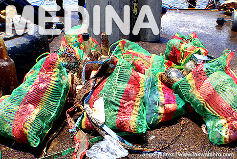 Medina Dive Against Debris