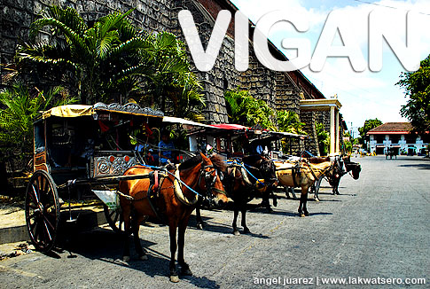 """Tour Vigan with these horse-drawn carriages called """"calesa"""""""