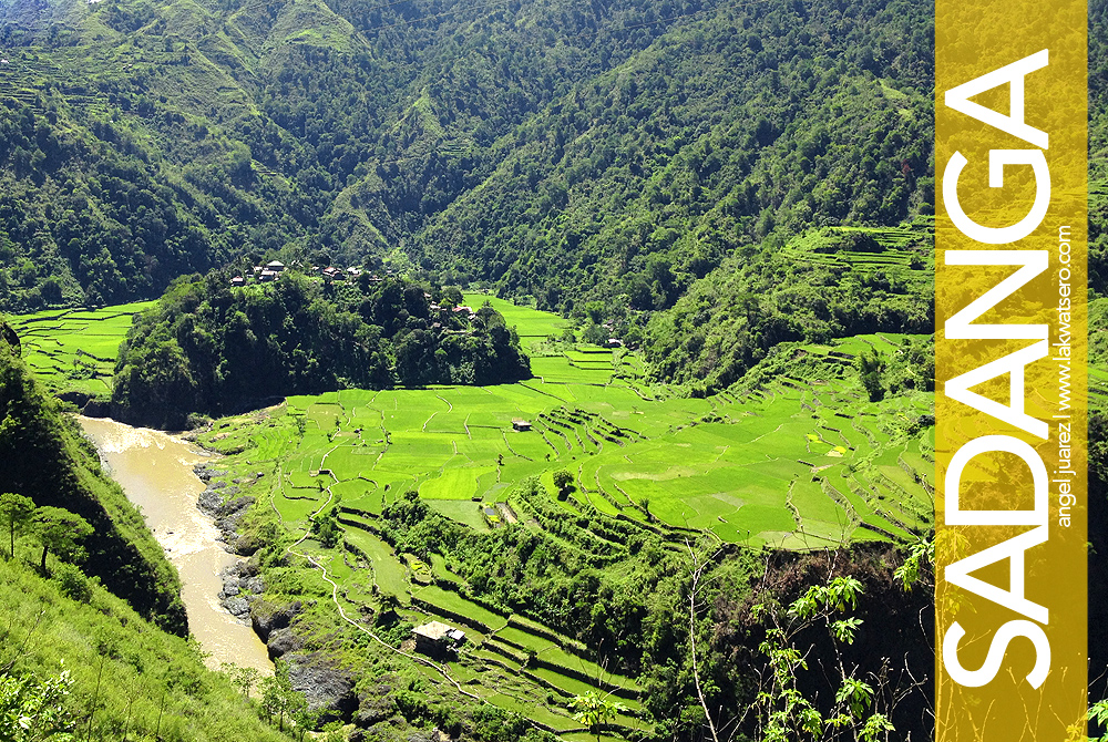Anabel Rice Terraces